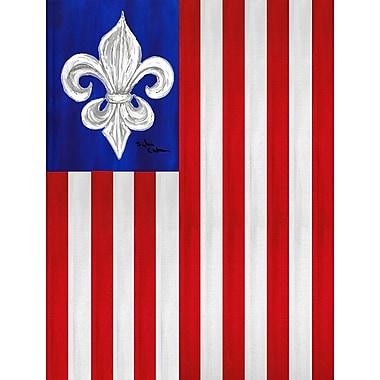 Caroline's Treasures USA Fleur de lis Patriotic American House Vertical Flag