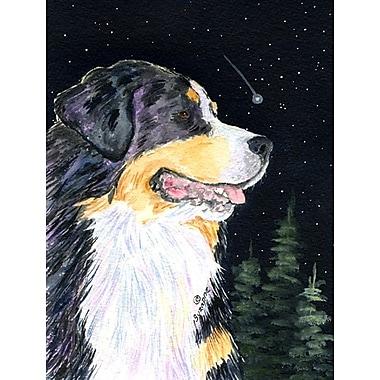 Caroline's Treasures Starry Night Bernese Mountain Dog 2-Sided Garden Flag