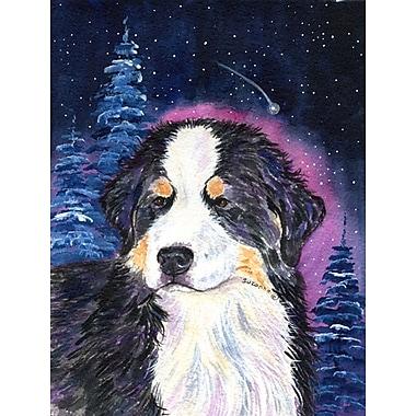 Caroline's Treasures Starry Night Bernese Mountain Dog House Vertical Flag
