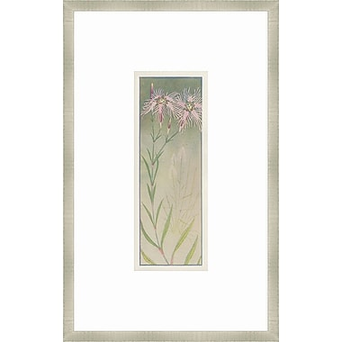 Melissa Van Hise Alpine Flora V Framed Graphic Art