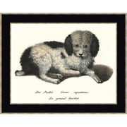 Melissa Van Hise Fancy Dogs I by Choate Design Framed Graphic Art