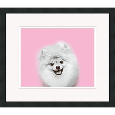 Melissa Van Hise Pomeranian Retro by Choate Design Framed Graphic Art