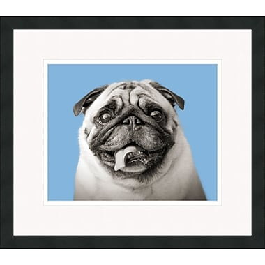 Melissa Van Hise Pug Retro by Choate Design Framed Graphic Art