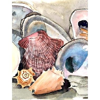 Caroline's Treasures Sea Shells 2-Sided Garden Flag