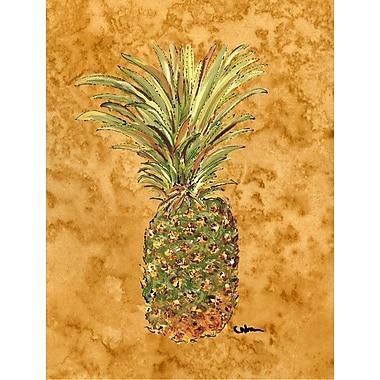 Caroline's Treasures Pineapple 2-Sided Garden Flag