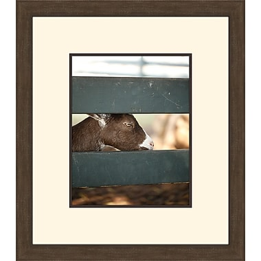 Melissa Van Hise Get Your Goat I by Christie Brace Framed Photographic Print