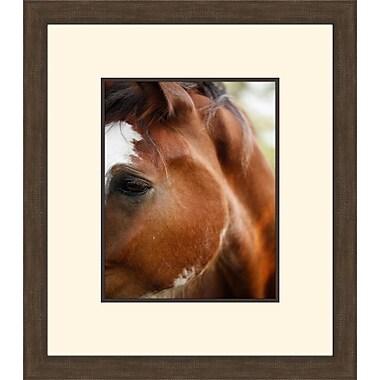 Melissa Van Hise Blaze II by Christie Brace Framed Photographic Print