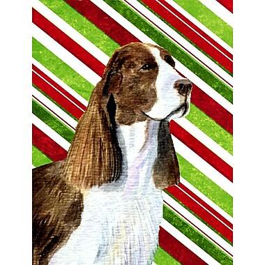 Caroline's Treasures Springer Spaniel Candy Cane Holiday Christmas 2-Sided Garden Flag