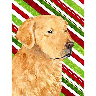 Caroline's Treasures Golden Retriever Candy Cane Holiday Christmas 2-Sided Garden Flag