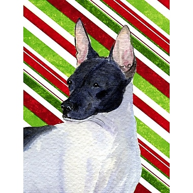 Caroline's Treasures Rat Terrier Candy Cane Holiday Christmas 2-Sided Garden Flag