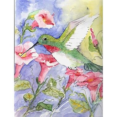 Caroline's Treasures Hummingbird House Vertical Flag