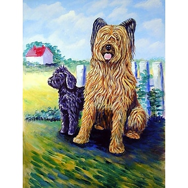 Caroline's Treasures Briard Training Day for the puppy 2-Sided Garden Flag