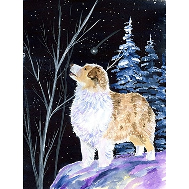 Caroline's Treasures Starry Night Australian Shepherd 2-Sided Garden Flag