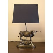 Tailgate Toss NCAA Tim Wolfe 19'' Table Lamp; Texas