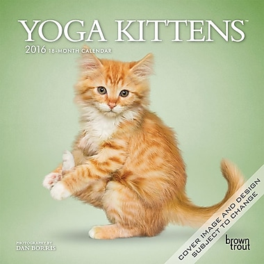 BrownTrout Publishers – Calendrier mural 2016, 12 mois, Yoga Kittens, 7 x 7 po, anglais