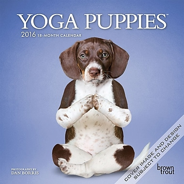 BrownTrout Publishers – Calendrier mural 2016, 12 mois, Yoga Puppies, 7 x 7 po, anglais