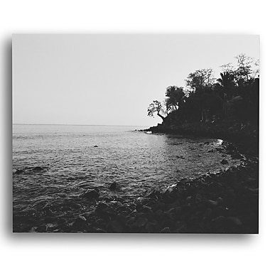 KindredSolCollective 'Vista II' by Ed Fladung Photographic Print on Wrapped Canvas; 36'' H x 48'' W