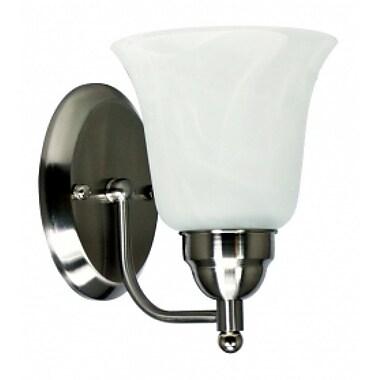 EfficientLighting 1-Light Wall Sconce