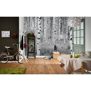 WallPops! Komar Birch Forest Wall Mural