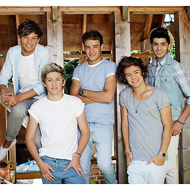 WallPops! One Direction Barn 8.3' x 106.3'' Wall Mural