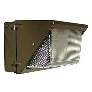 Barron Lighting 1-Light Outdoor Large Wall Light in Architectural Bronze