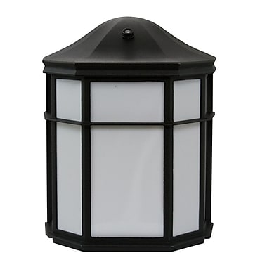 EfficientLighting 1-Light Outdoor Flush mount; Black