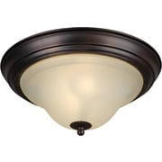 Forte Lighting Energy Efficient 2-Light Flush Mount; 11.25'' H x 5.75'' W