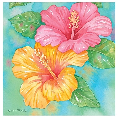 Thirstystone Hibiscus Garden Pair Occasions Coasters Set (Set of 4)