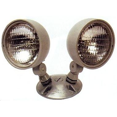 Morris Products Dual Weatherproof Head Remote Emergency Light