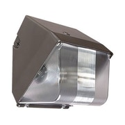 Barron Lighting 1-Light Outdoor Metal Halide Wall Light in Architectural Bronze