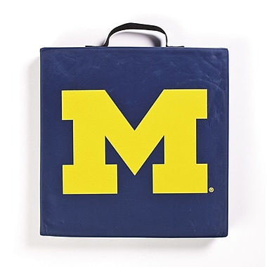 BSI Products NCAA Michigan Wolverines Outdoor Adirondack Chair Cushion