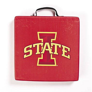 BSI Products NCAA Iowa State Cyclones Outdoor Adirondack Chair Cushion