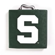 BSI Products NCAA Michigan State Spartans Outdoor Adirondack Chair Cushion