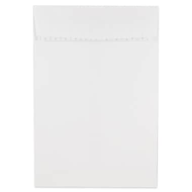 JAM Paper® 6 x 9 Open End Envelopes with Self Adhesive Closure, White, 500/Pack (356828777)