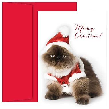 JAM Paper® Christmas Holiday Cards Set, Christmas Cat, 18/Pack (526867300g)
