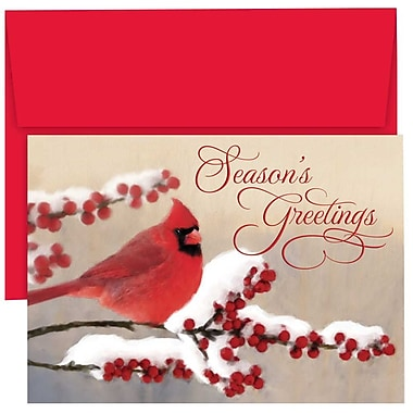 JAM Paper® Christmas Holiday Cards Set, Winter Cardinal, 18/Pack (526869000g)