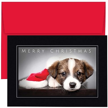 JAM Paper® Christmas Holiday Cards Set, Merry Christmas Puppy, 2 packs of 18 (526869500g)