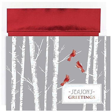 JAM Paper® Christmas Holiday Cards Set, Cardinals, 16/Pack (526871400)