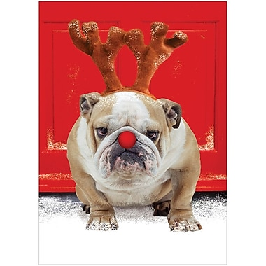 JAM Paper® Blank Christmas Holiday Cards Set, Bulldog, 25/Pack (526C1120B)