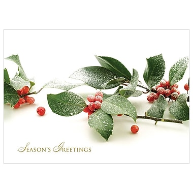 JAM Paper® Blank Christmas Holiday Cards Set, Holly with Snow, 25/Pack (526C1165B)