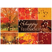 JAM Paper® Blank Thanksgiving Card Set, Collage, 25/Pack (526M0982WB)