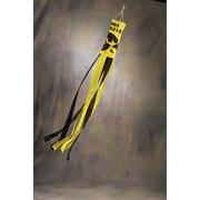 BSI Products NCAA Wind Sock; Iowa