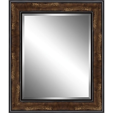 Ashton Wall D cor LLC Wood Framed Beveled Plate Glass Mirror; Small