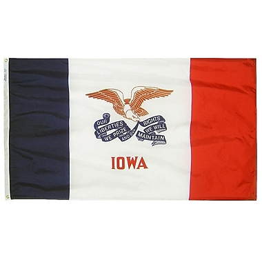 Annin Flagmakers Iowa State Flag; 4' x 6'