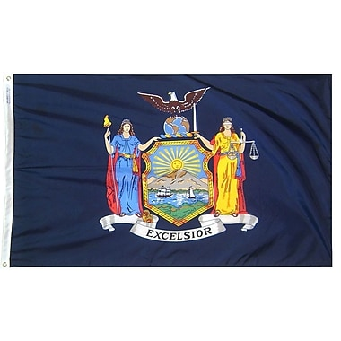 Annin Flagmakers New York State Flag; 3' x 5'