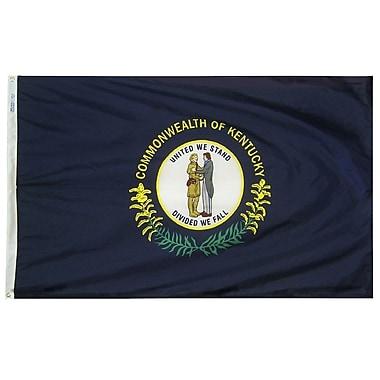 Annin Flagmakers Kentucky State Flag; 4' x 6'