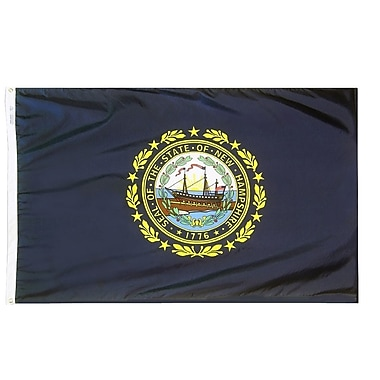 Annin Flagmakers New Hampshire State Flag; 3' x 5'