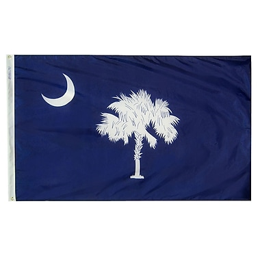 Annin Flagmakers South Carolina State Flag; 4' x 6'
