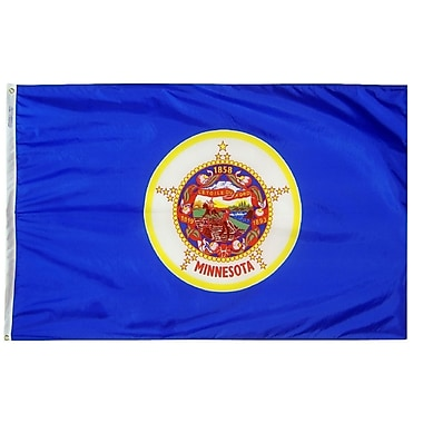 Annin Flagmakers Minnesota State Flag; 4' x 6'