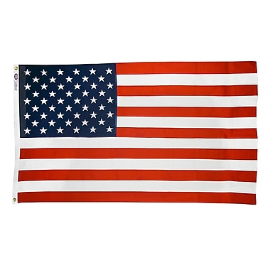 Annin Flagmakers United States Traditional Flag